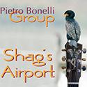 Shag's Airport
